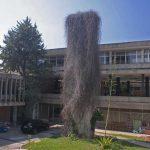Antigua Universidad Laboral. Patio exterior y elemento ornamental (foto Francisco Rodríguez Marín)